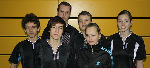 20110124-Badminton